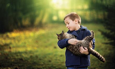 Boy-Cat_440x265
